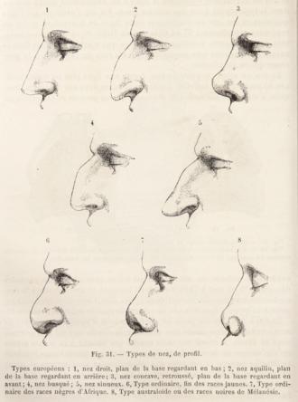 Herbert Hope Risley - Image: Topinard nasal index