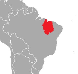 Maranhão slider - Image: Trachemys adiutrix