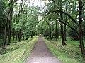 Trebisov Andrassyovsky kastiel (park)-40.JPG