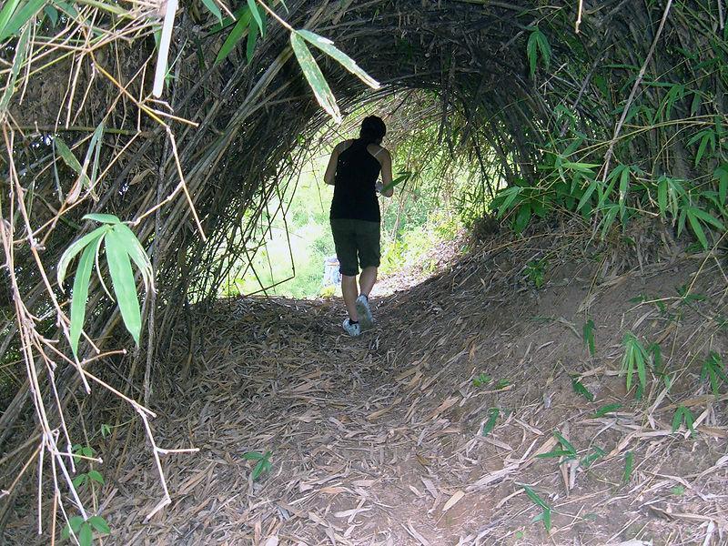 File:Trekking in Chiang Rai Province 2007-05 3.JPG