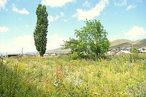 Tsaghkunk, Gegharkunik - The landscape of Tsaghkunk