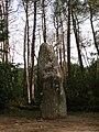 Tumulus, quadrilatère et menhir de Manio 2005 01.jpg