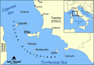 Invasion of Elba