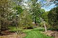 Tyler Arboretum - DSC01806.JPG