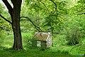 Tyler Arboretum - DSC01896.JPG