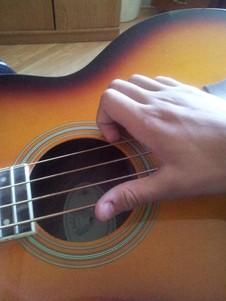 The typical position of the slapping hand Typical form of a slapping hand in a bass.jpg