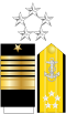 US Navy O11 insignia.svg