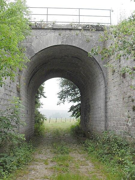Ugny-sur-Meuse Meuse (55) - Tunnel sous la ligne de chemin de fer Neufchâteau - Pagny-sur-Meuse dans la prairie d'Ugny. Cette portion de la ligne est aujourd'hui désaffectée. Cette ligne à double voie qui a nécessité la construction d'un certain nombre d'ouvrages d'art en pierre: ponts, viaducs, tunnels, n'a été utilisée qu'un siècle à peine, avant d'être abandonnée.