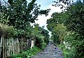 Ul. Kolcowa (Sperlings weg) - panoramio.jpg