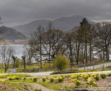 "The daffodils of the Lake District are immortalised in Wordsworth's ""I Wandered Lonely as a Cloud"". Ullswater (geograph 3932818) (cropped).jpg"