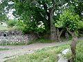 Ulu çınar alttan - panoramio.jpg
