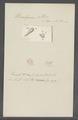 Urceolaria albina - - Print - Iconographia Zoologica - Special Collections University of Amsterdam - UBAINV0274 113 21 0008.tif
