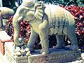 VAIKUNTAM-T.B.Dsm-Dr. Murali Mohan Gurram (16).jpg