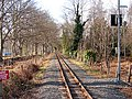 Vale of Rheidol Railway track at Glanyrafon - geograph.org.uk - 683555.jpg