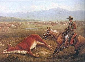California hide trade - A Californian rancher takes in cattle, a duty that would begin the process of the California Hide Trade.