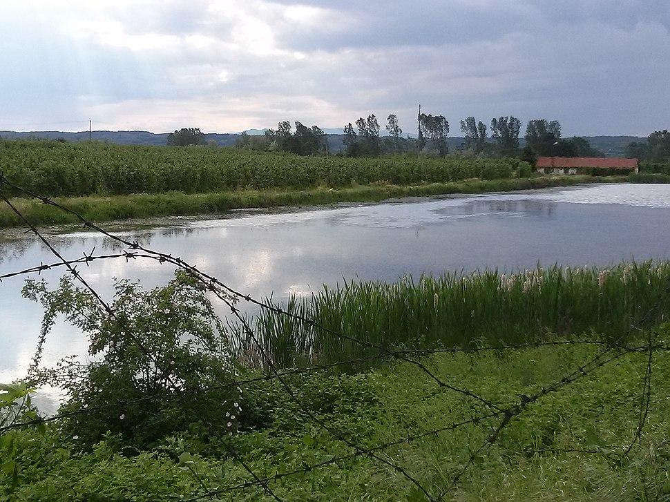 Veštačko jezero, Beli Potok 05