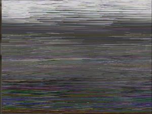 VideoCrypt - Example of a PAL video fields scrambled by VideoCrypt I