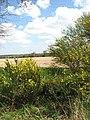 View east across Bessingham Road - geograph.org.uk - 783286.jpg