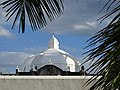 View of Cathedral Dome througn Palm Fronds - Campeche - Yucatan Peninsula - Mexico (15686781565).jpg