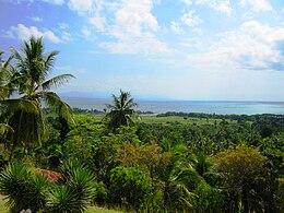Vido de Haitian Landscape-hispaniola.jpg
