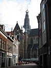 view of saint bavo, haarlem