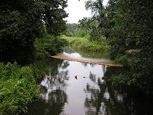 Una veduta del Fosso Versilia all'interno dell'omonimo parco