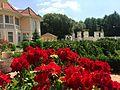 Villa Rose 11.jpg