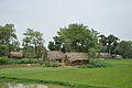 Village Kayrapur - NH 2B - Bardhaman 2014-06-28 5110.JPG