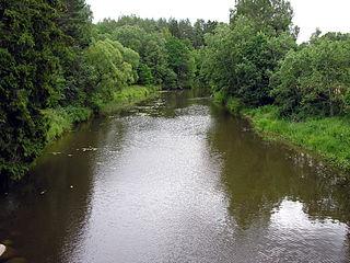 The river Virvycia at Gyvoliai village