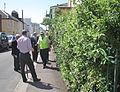 Visite du Branchage Saint Hélier 2011 02.jpg