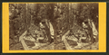 Visitors at the Flume, 1867, by H. S. Fifield 2.png