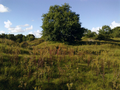 Vlakte van Waalsdorp (Waalsdorpervlakte) 2016-08-10 img. 534.png