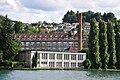Wädenswil - Zürichsee IMG 8380.JPG