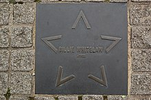 WTC Andy Mabbett Coventry Walk of Fame - Billie Whitelaw.jpeg