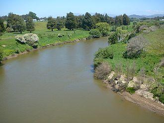 Waipa River - Looking south from Whatawhata bridge