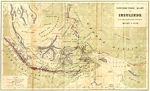 Map from The Malay Archipelago