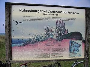 Wallnau Waterbird Reserve - Information board