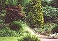 Walsall Arboretum 6.jpg