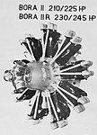 Walter Bora II-R (1935).jpg