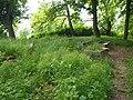 Wandowo, stary cmentarz - panoramio (3).jpg