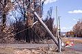 Waroona fire 2016 gnangarra 230116-110.JPG
