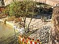 Wasserhaltung mit trockengelegtem Lahngrund für Einbau Traggerüst Weidenhäuser Brückensanierung in Marburg mit hier gesperrtem Lahntalradweg, 2018-04-18.jpg