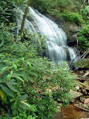 Pisgah National Forest - Waterfall on West Prong Hickey Fork Creek