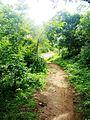 Way to SRI VALUKKUPARAI MUNIAPPAN TEMPLE and SRI JALAMKANDA MUNIAPPAN TEMPLE, Yercaud foot hill, Salem - panoramio (2).jpg