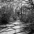 Weg (13463480284).jpg