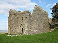 Weobley Castle Oct 2009 (1).jpg