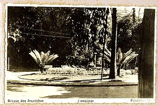 Bosque dos Jequitibas - Campinas