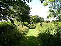 Westholme Lane - geograph.org.uk - 226221.jpg