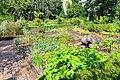 Wikipedia 13. Fotoworkshop Botanischer Garten Erlangen 2013 by-RaBoe 028.jpg