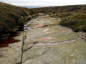 English: Wildboar Clough (Bedrock) Looking to ...